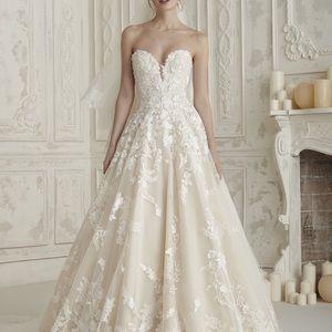 2019 Pronovias Wedding Dress